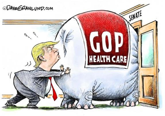 TrumpcareCartoon